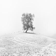 Hannes Ka, lover (Austria, Europe)