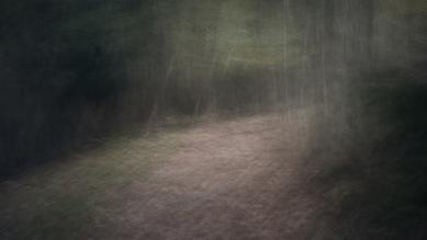 Raffaella Castagnoli, lost in the wood (Italy, Europe)