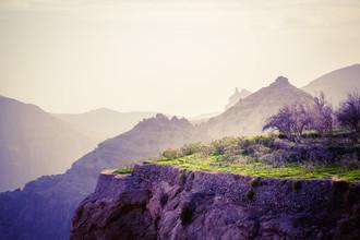 Eva Stadler, Green (Oman, Asien)
