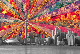 Blooming Toronto - fotokunst von Bianca Green