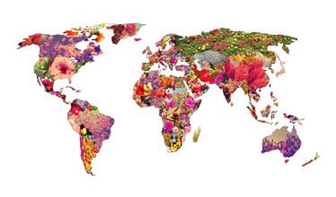 Bianca Green, It's Your World (Uruguay, Latin America and Caribbean)