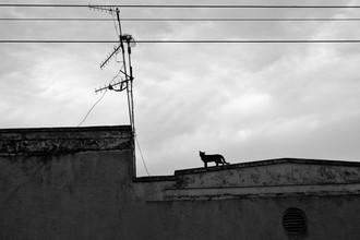 Victoria Knobloch, In Jinja..... (Uganda, Africa)