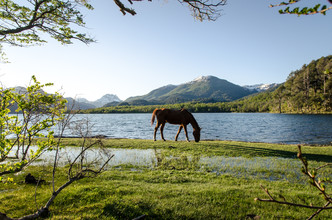 Marco Entchev, Patagonia - Horse (Argentina, Latin America and Caribbean)