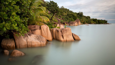 Moritz Esser, Tropisches Paradies (Seychellen, Afrika)