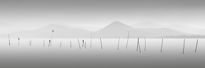 Ronny Behnert, Four Birds - Lago Trasimeno Italien (Italien, Europa)