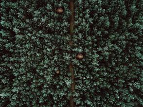 Steven Ritzer, Hidden Path (Deutschland, Europa)
