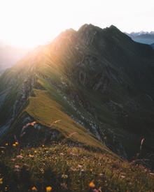 Philipp Heigel, SUNNY MORNING. (Switzerland, Europe)