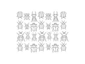 Catalina Villegas, Ink Scarabs (Kolumbien, Lateinamerika und die Karibik)