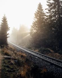 Oliver Henze, Rays for days - Sonnenaufgang auf dem Weg zum Brocken (Deutschland, Europa)