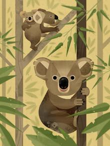 Dieter Braun, Koalas (Deutschland, Europa)