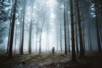 Misty Forest - fotokunst von Asyraf Syamsul