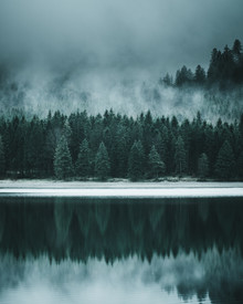 Forest Reflection - fotokunst von Luca Jaenichen