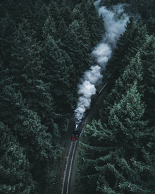 Luca Jaenichen, Forest Train (Germany, Europe)
