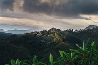 Tropisches Hochland - fotokunst von Felix Finger