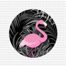Loulou von Glup, Tropical flamingo (Belgien, Europa)