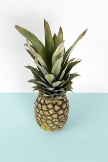 Loulou von Glup, Pop pineapple (Belgien, Europa)