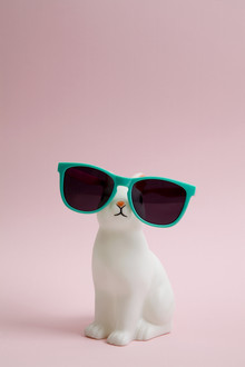 Loulou von Glup, Sunglasses bunny (Belgien, Europa)