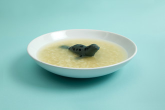 Sea Lion Soup - fotokunst von Loulou von Glup