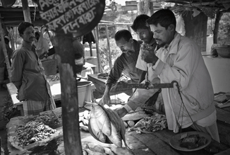 Jakob Berr, Merchants weigh fish at the market, Bangaldesh (Bangladesh, Asien)
