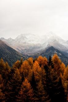 Christian Hartmann, Berge im Herbst (Österreich, Europa)