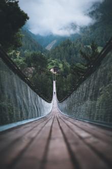 Johannes Hulsch, Suspension Bridge (Switzerland, Europe)