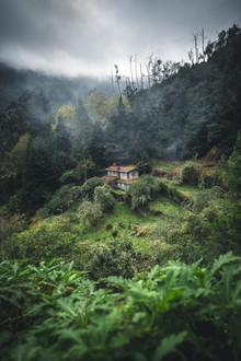 Johannes Hulsch, Hütte im Jungle (Portugal, Europa)