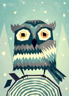 Sjoerd Piepenbrink, Owl III (Netherlands, Europe)