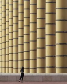 Roc Isern, Urban bamboo (Spain, Europe)