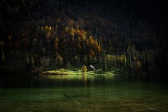 Michael Schaidler, grünes Paradies (Deutschland, Europa)