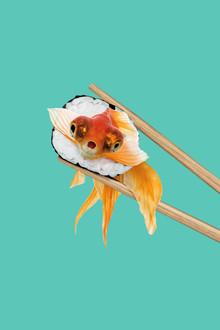 Sushi Goldfish - fotokunst von Jonas Loose