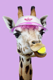 Jonas Loose, Tennis Giraffe (Germany, Europe)