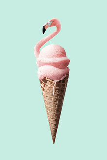 Flamingo Cone - Fineart photography by Jonas Loose