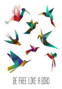 Sabrina Ziegenhorn, free like a bird (Germany, Europe)