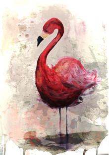 Sabrina Ziegenhorn, pink Flamingo (Deutschland, Europa)