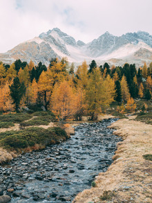 Sebastian 'zeppaio' Scheichl, The colours of autumn (Switzerland, Europe)