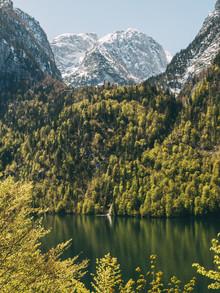 Sebastian 'zeppaio' Scheichl, Green Paradise (Germany, Europe)