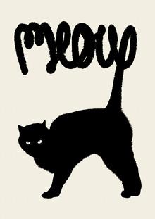 Florent Bodart, Meow (France, Europe)