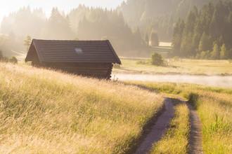 Martin Wasilewski, Goldener Morgen in den Bergen (Deutschland, Europa)