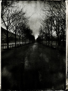Sophie Etchart, Tuileries (Frankreich, Europa)