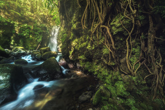 Jean Claude Castor, Wasserfall auf den Azoren Salto do Prego Sao Miguel (Portugal, Europa)