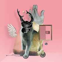 KatzenJammer 16 - fotokunst von Marko Köppe