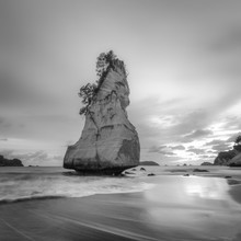 Christian Janik, CATHEDRAL COVE (New Zealand, Oceania)