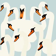 Katherine Blower, Swan Pattern (Großbritannien, Europa)