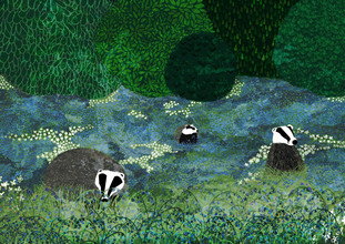 Katherine Blower, Badgers Amongst the Bluebells (Großbritannien, Europa)