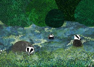 Katherine Blower, Badgers Amongst the Bluebells (Großbritannien, Europa)