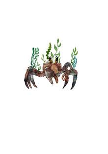 Katherine Blower, Crab and Kelp (Großbritannien, Europa)