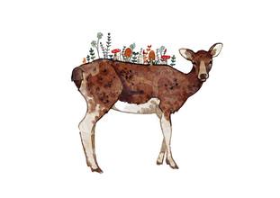 Katherine Blower, Autumn Deer (Großbritannien, Europa)