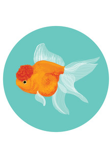 Katherine Blower, Fancy Goldfish (United Kingdom, Europe)