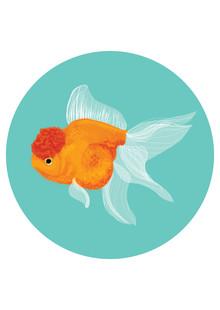 Katherine Blower, Fancy Goldfish (Großbritannien, Europa)