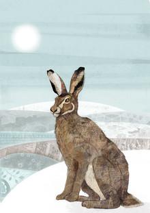Solstice Hare - fotokunst von Katherine Blower